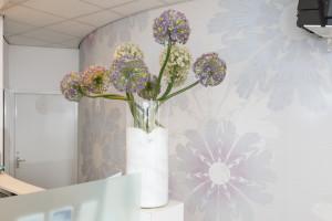 tandarts Breda - decoratie tandarts Dental Clinics Breda