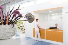 Dental Clinics Almere