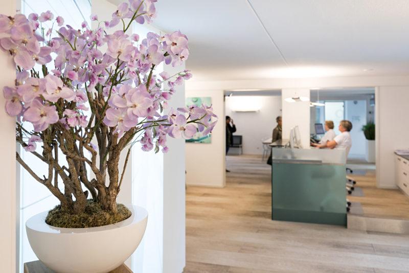 tandarts Rotterdam Zuid - interieur Dental Clinics Rotterdam Zuiderterras